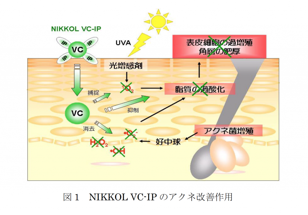 VCIPアクネに対する効果