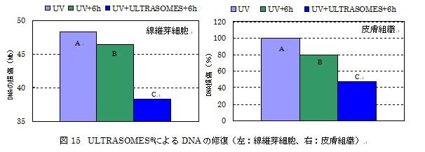 DNAの修復